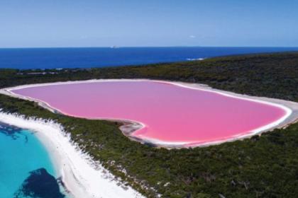 lac hillier en Australie de couleur rose